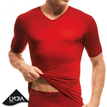 V Shirt 1/4 Arm Flash Basic ISAbodywear(ISAfp1728a)